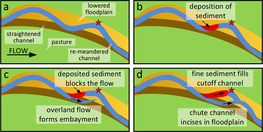 Graphical abstract for Chute cutoff as a morphological response to stream reconstruction: The possible role of backwater